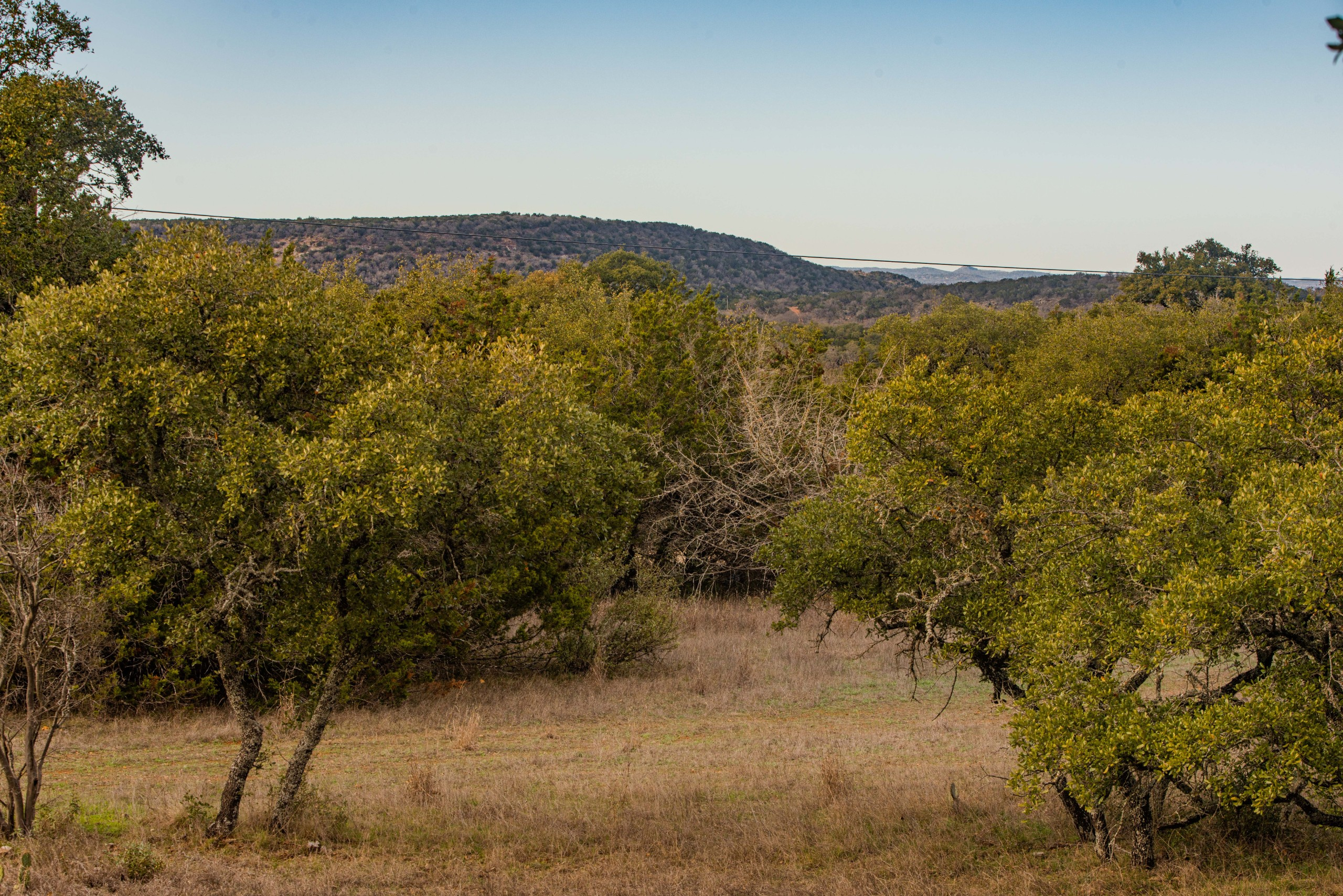Mark Harman Texas Ranch Land Live Water-Old Willow Ranch-IMG08408